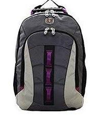 SwissGear Skyscraper Backpack with Laptop Compartment